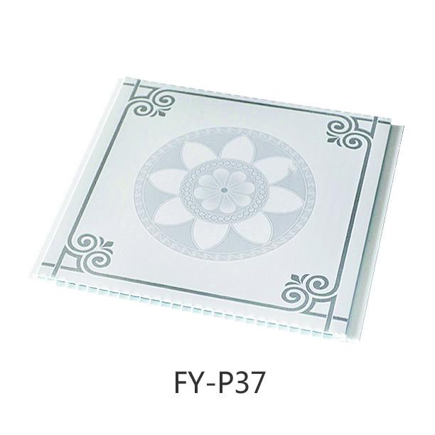 FY-P37