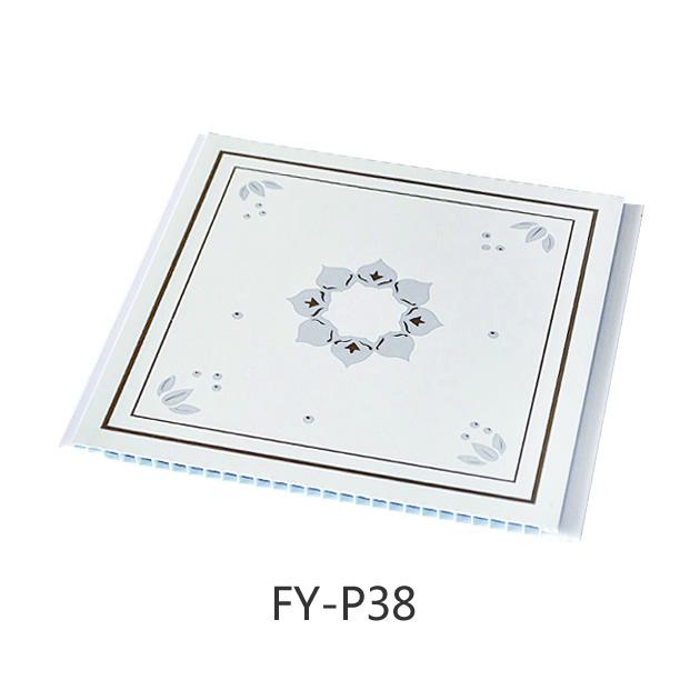 FY-P38